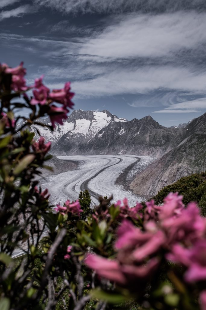 Aletschgletscher - ein Wunder der Natur